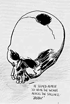 pettibon skull