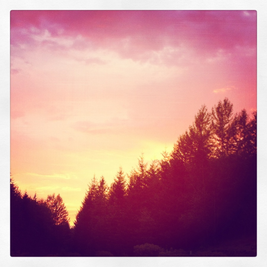 tp sunset