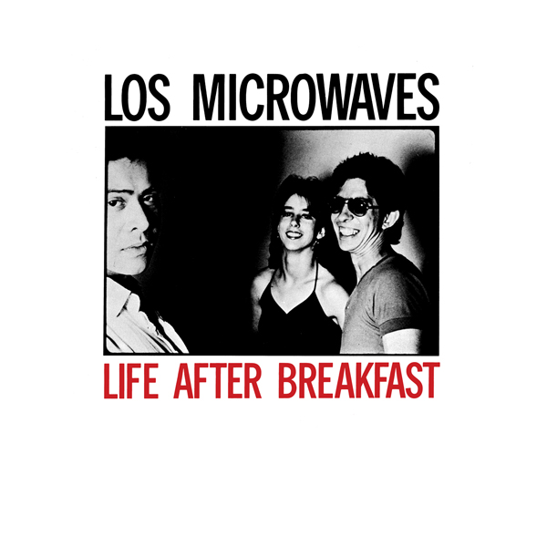 los microwaves band